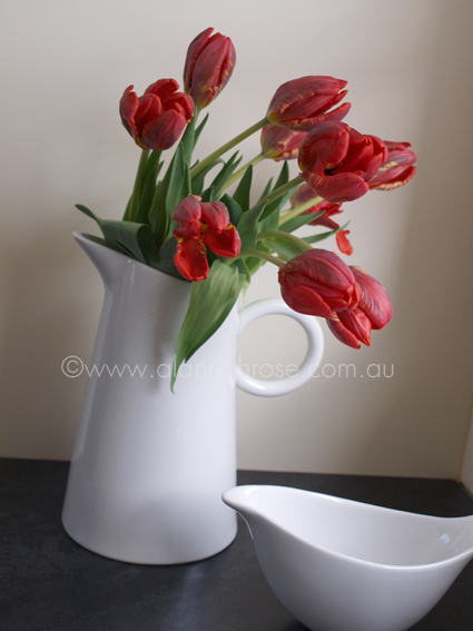 tulips in jug
